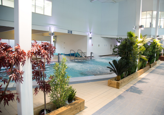 M Club Spa and Fitness pool